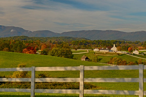 Albemarle County Va Farm Land