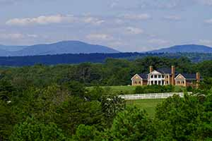 VA Luxury Farms and Estates