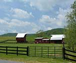 Charlottesville Virginia Horse Farm for sale